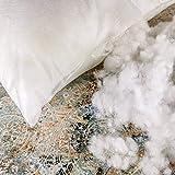 Relleno de Cojín 2 Uds. Fibra - Premium Efecto Pluma - Almohadas Sofá, Cama - Antibacteriano, Transpirable (Fibra, 45 X 45)