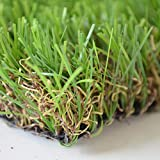 Turf 100Pcs Naturale Erba Prato Bonsai della Decorazione del Giardino Giardino Piantare Clean Air per Rendere la Vostra casa Piena di Verde