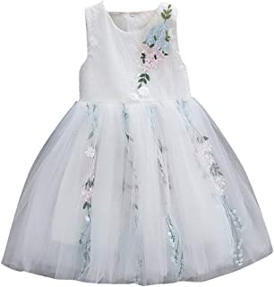 Clearance! 6-24 Months Toddler Baby Girls Princess Dresses, Cute Sleeveless Flowers Party Wedding Tulle Mesh Tutu Dress Skirt