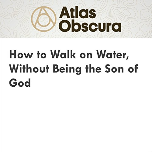 How to Walk on Water, Without Being the Son of God audiobook cover art