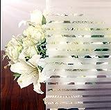 aingoo rayas opaca para ventana pantalla de privacidad Window Film auto-adhesivos Your Design 105 45 x 200 cm