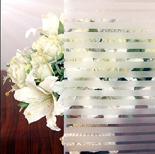 Aingoo Protezione di visione di finestra film smerigliato stile di vetro pellicola finestra film