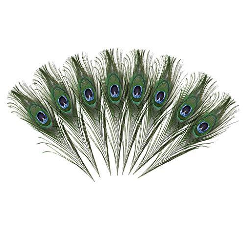 FBGood - Plumas de pavo real naturales para manualidades, Halloween, disfraz de dama de honor, guirnalda de Navidad y decoracin en casa (8 unidades)