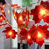 Herbstgirlande,HENMI Herbst Blättergirlande, Ahornblatt Lichterketten, Herbst Saison 20-Lichtern, perfekte Dekoration für Erntedankfest Deko& Weihnachtsbeleuchtung - 4