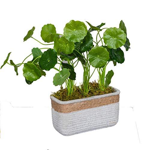 Ferrisland 鉢植え造花 人工観葉植物 インテリア 飾り 人工 フェイク グリーン 簡単世話いらず 水やり不要 インテリア おしゃれ グリーン お誕生日 お祝い ギフト プレゼント