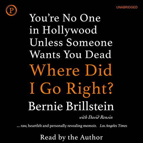 Where Did I Go Right? audiobook cover art