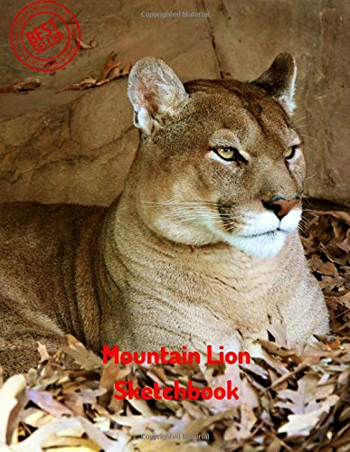 Coloring Lion Mountain Page Free