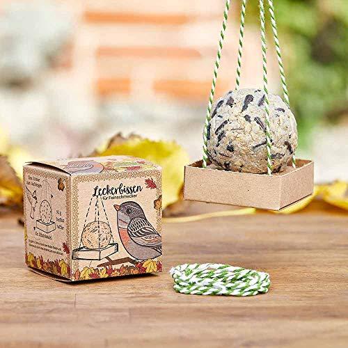 Die Stadtgärtner Vogelfutter • Futterstelle mit bestem Futter für alle Wildvögel • Ganzjahresfütterung • Der Leckerbissen für Feinschmecker