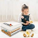 S SMAUTOP Incubadora de Huevos, incubadora automática de Huevos para 16 Huevos, eclosiones de Aves pequeñas Control automático de Temperatura y Humedad para Pollos, Patos, Gansos en casa