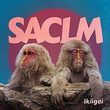 SACLM