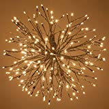 12' Silver Starburst Fairy Light Ball Warm White LED Twinkle Lights - Star Lights - Lighted Branches (12', Silver Branches/Warm White Twinkle Lights)
