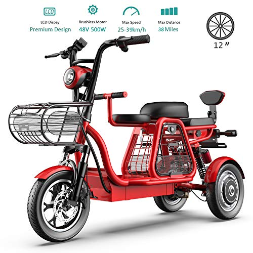 Best Buy! 3 Wheel Electric Bikes for Adult 500W Mountain Electric Scooter 48V 12'' Electric Bicycle ...