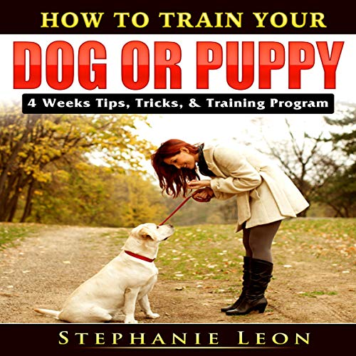 How to Train Your Dog or Puppy cover art