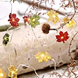 MIYA LIFE Maple Leaf Fairy String Lights 10ft 40LEDs Copper Wire With the Remote & Timer for Thanksgiving Harvest Halloween Christmas Birthday Gift Autumn Indoor Parties Home Bedroom Decoration