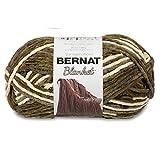 Bernat Blanket Yarn, Gathering Moss