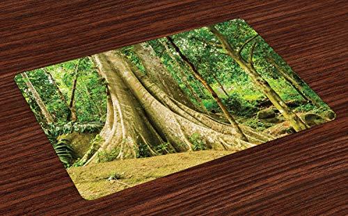 ABAKUHAUS Boom Placemat Set van 4, Grote boomstam in het bos, Wasbare Stoffen Placemat voor Eettafel, Fern Green Pale Green