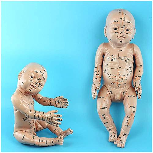 LBYLYH Menschliche Baby-Akupunktur-Vorlage - Pädiatrische Massage-Puppen-Vorlage - Chinesische Medizin Pädiatrische Universal-Modellmassage-Simulation - Pädiatrische Praxis-Babymassage