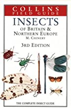Insects of Britain & Northern Europe: The Complete Insect Guide (Collins Field Guide)