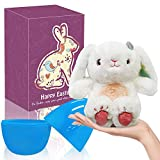 Devis 10.2 inches Easter Eggs Filled with 9.8 inches Rabbit Stuffed Animal Plush Toy, Stuffed Easter Bunny, Easter Gifts for Kids Boys Girls