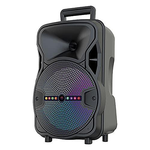 Altavoz Bluetooth Grande de Suelo Portátil Inalámbrico con Karaoke 8' 10 Watt ALP-804 | Sintonizador Radio FM, Batería Interna de 1800mah, Potente Altavoz, Puerto USB