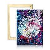 """decalmile Dipingere con i Numeri Kit DIY Pittura a Olio su Tela Pigmento Acrilico Stampato Arte della Parete Luna 16""""X 20"""" (40 x 50 cm, con Cornice)"""