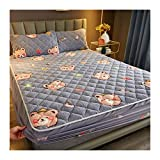 yueyouhuyou Addensare Lambswool Materasso Trapuntato Cover King Queen Bed Letto Aderente Materasso Materasso Topper Air-permeables Bed Pad (Color : 1, Size : 200x220x25cm)