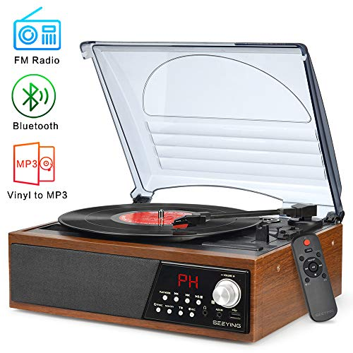 Record Player Turntable,Vinyl Bl...