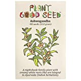Ashwagandha Root Seeds (~80): Non-GMO, Heirloom, Open Pollinated Seeds from The United States