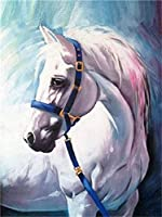 NC56 DIY Canvas Painting Kit for Adults White Horse Paint Digital Painting Kit for Adults Acrylic Painting Book for Children and Adults Beginner Brush Paint