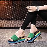 Chanclas Mujer Verano 2019,Zapatillas de Arco Iris, Ropa de Verano de la Moda Zapatillas Frescas de Moda, Pendientes con Cremallera de Ocio...