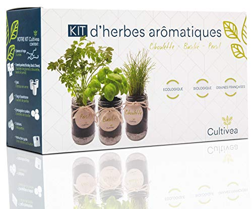Kit Prêt à Pousser d'Herbes Aromatiques