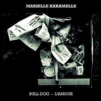 Bull Dog- L'amour