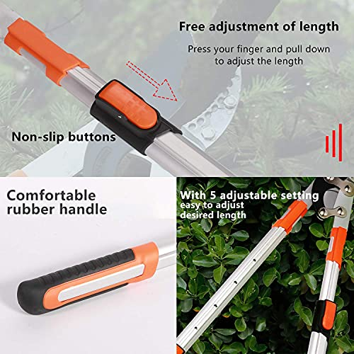 YINLONGDAO Extendable Anvil Loppers Tree Trimmer with Compound Action, Chops Thick Branches Ease,29-41 Inch Telescopic Heavy Duty Branch Cutter,2.4 Inch Clean Cut Capacity.