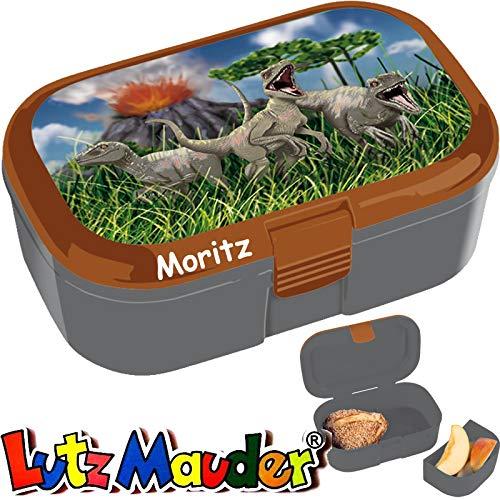 Lunchbox * Dinosaurier Plus Wunschname * für Kinder von Lutz Mauder   Brotdose mit Namensdruck   Perfekt für Velociraptor-Fans   Vesperdose Brotzeitbox Brotzeit Schule Kindergarten Dino (mit Namen)