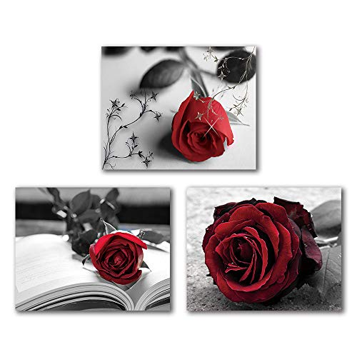 """Vintage Painting Black and White Red Rose Wall Art Paintings Set of 3 (8""""X10"""" Canvas Picture) Abstract Wall Art Decor Flower Art Paint for Bedroom Living Room Home Decor Valentines Gift Frameless"""