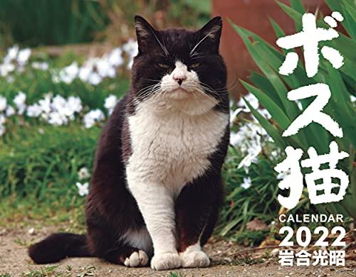 ボス猫カレンダー2022【特別付録 A1サイズポスターカレンダー付】