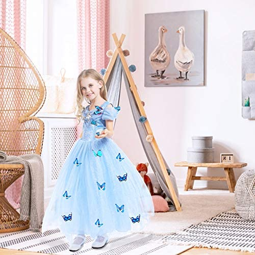 Cinderella butterfly dress _image1