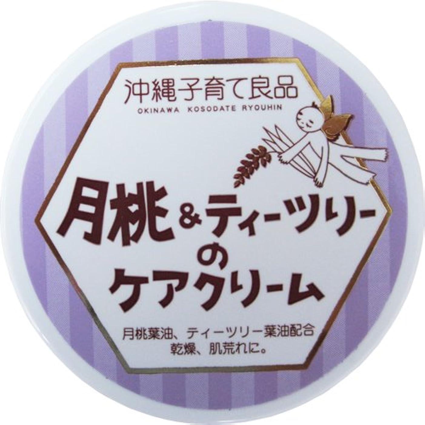 入手します転倒切り離す沖縄子育て良品 月桃&ティツリーのケアクリーム (25g)