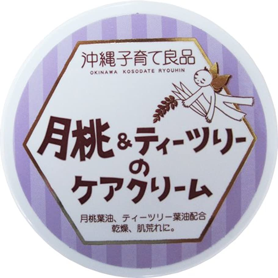 大いにリレー策定する沖縄子育て良品 月桃&ティツリーのケアクリーム (25g)