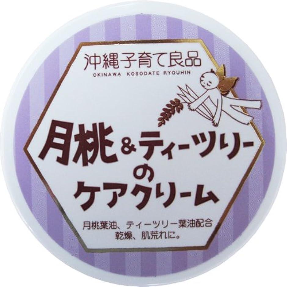 場合アンデス山脈製品沖縄子育て良品 月桃&ティツリーのケアクリーム (25g)