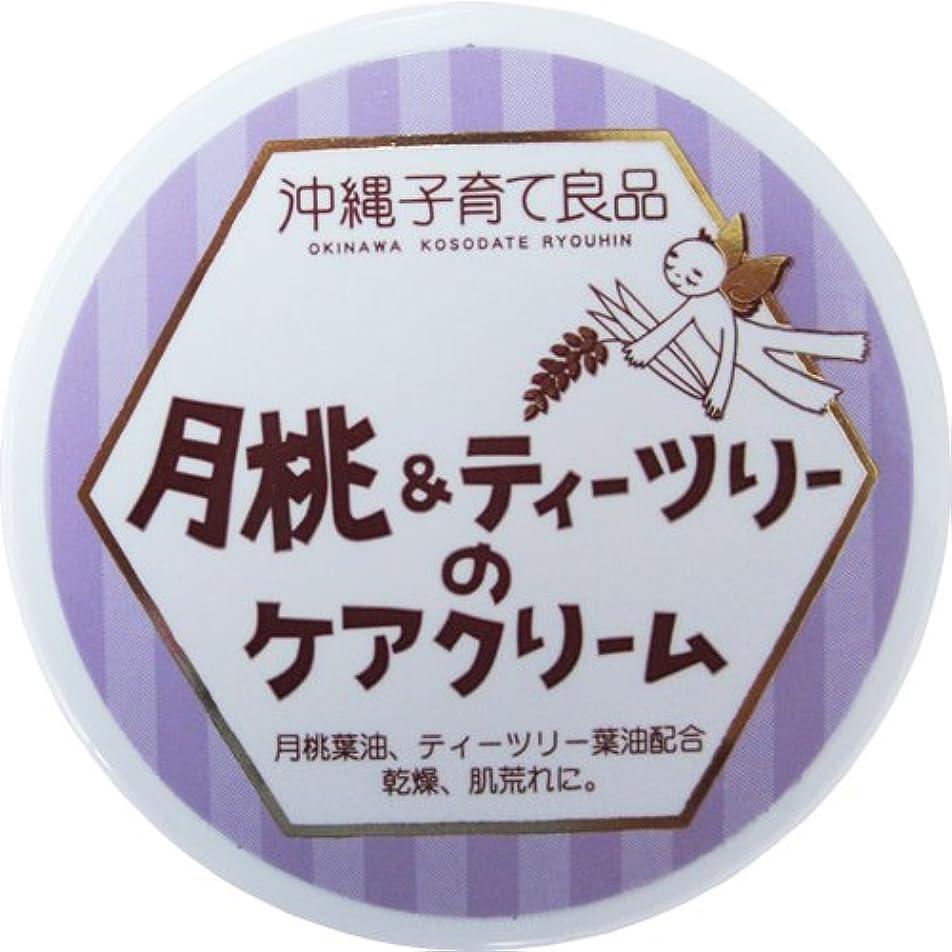 書き込み端アクセスできない沖縄子育て良品 月桃&ティツリーのケアクリーム (25g)