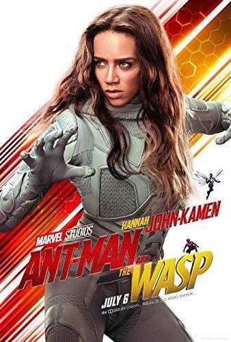 輸入ポスターANT MAN AND THE WASP - ゴースト - アメリカ映画ウォールポスタープリント - 30 cm x 43 cm / 12インチx 17インチ