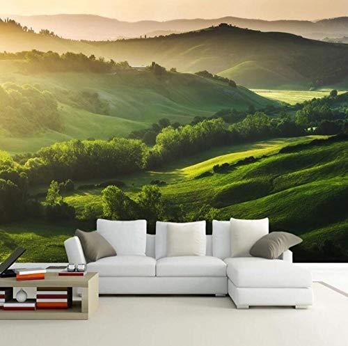 Foto Bergwald Grüne Landschaft Wandmalerei 3D Stereoskopische Wohnzimmer Wanddekoration Wandvlies Vlies-Tapete-150 * 105cm