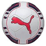 Puma Evopower 5 Ballon de Football pour Foot en Salle