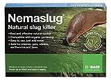 Slug Nematodes 30million (Treats 100sq.m)