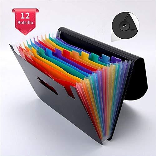 VBERWRUR Clasificadores Carpetas de Acordeón, Colores Archivador Acordeon 13 Bolsillos, Separadores Archivador A4, Archivadores Escolares con 2 Pcs etiquetas(Multicolor)