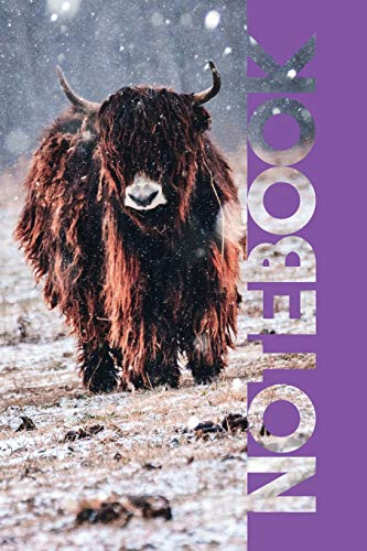 Notebook: Aberdeen Angus Terrific Composition Book for Highland Cow Farmers