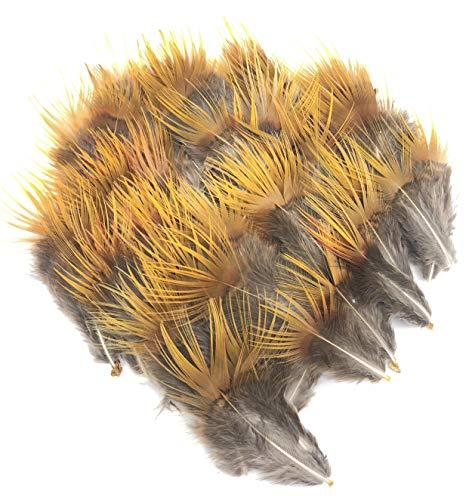 ERGEOB Natürliche Goldfasan Federn geflügel Goldfasan gelber Seide Wolle Kopfschmuck 5-8 cm (2-3 Zoll) Länge