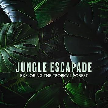 Jungle Escapade: Exploring the Tropical Forest