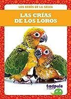 Las crías de los loros/ Parrot Chicks (Los Bebés De La Selva/ Rain Forest Babies)